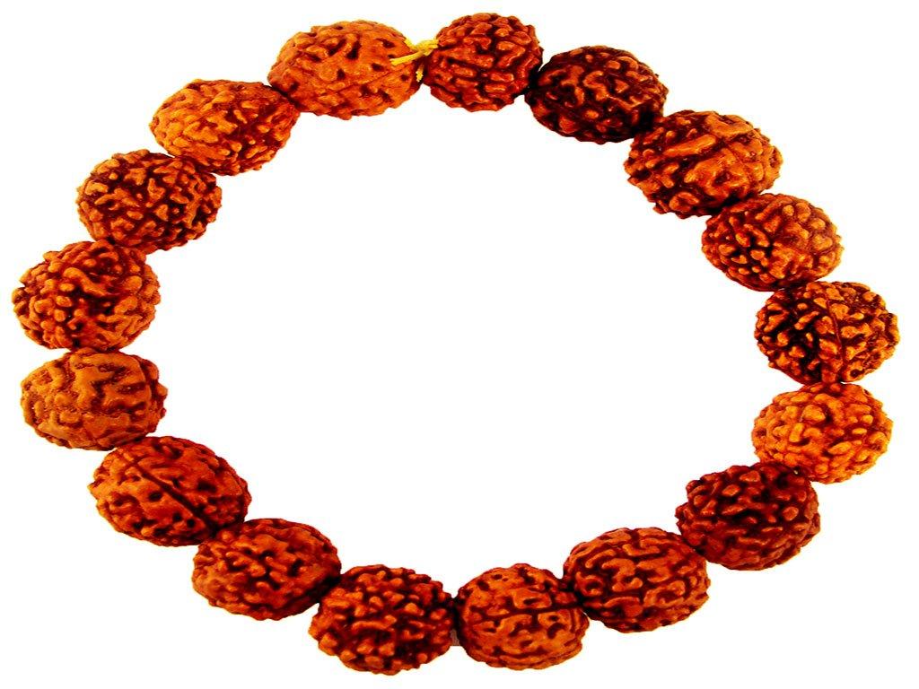 ITEM 71, Rudraksh Charm Bracelet